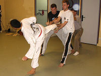 Taekwon-do Training - Breektesten